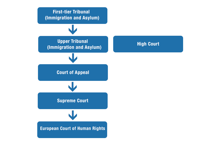 flowchart of the higher courts